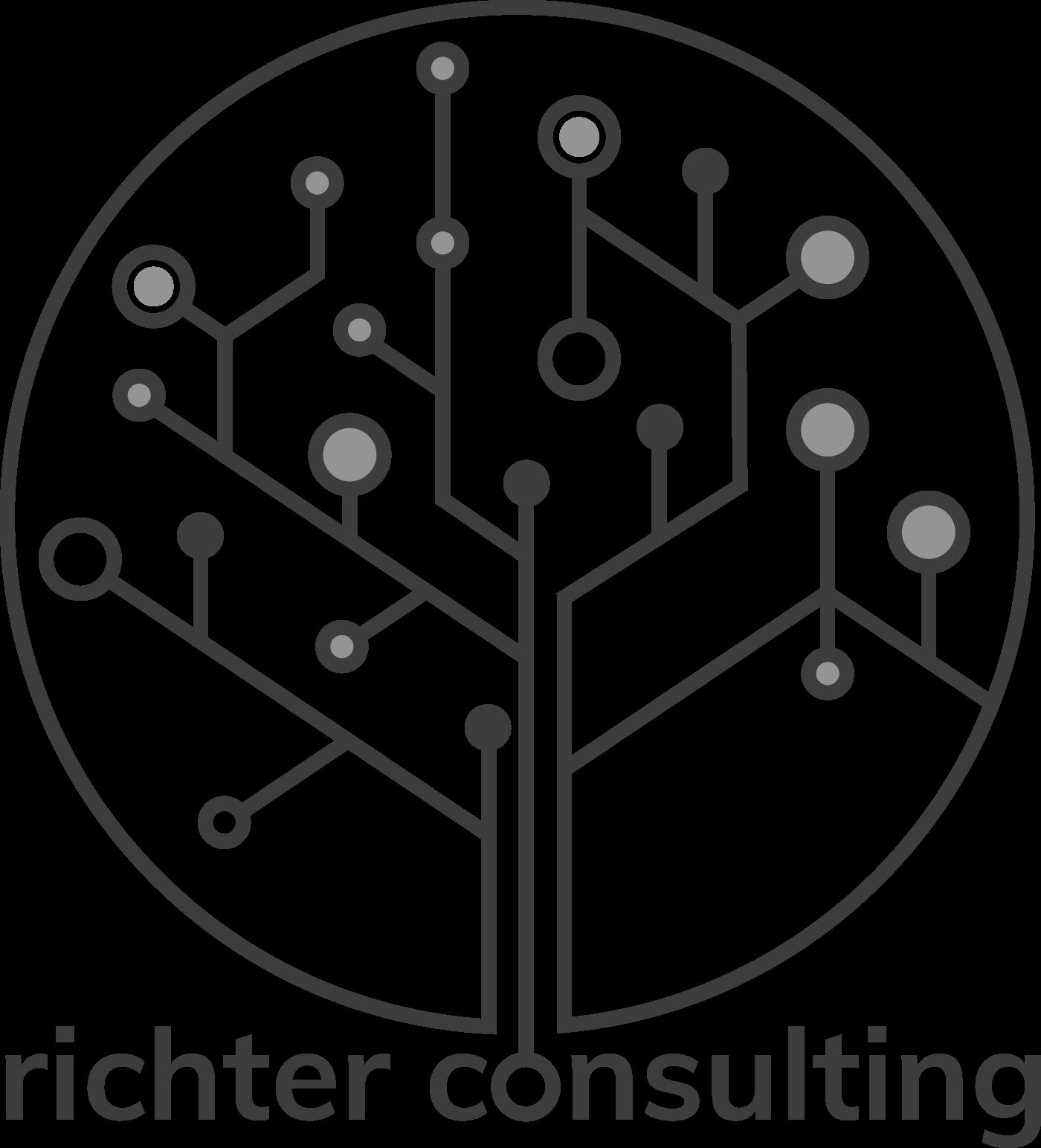 Logo richter consulting gmbh