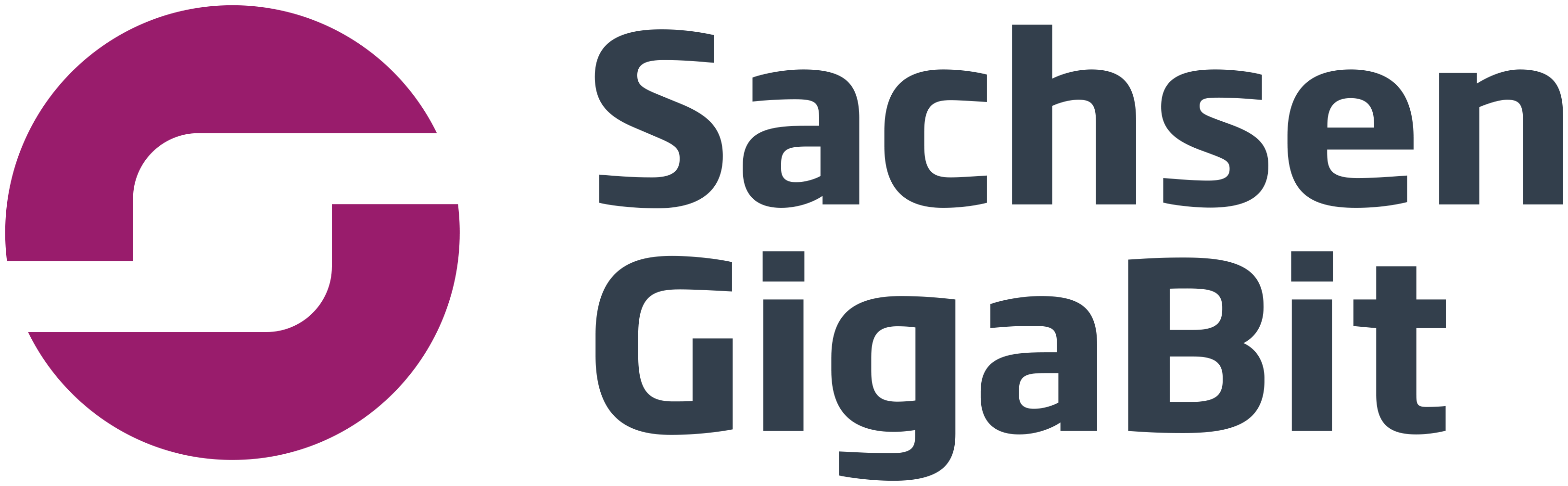 Logo SachsenGigaBit GmbH